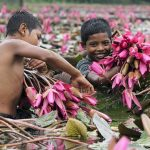Bangladesh: new study shows 80% percent of children infected by Delta are under 10 years of age
