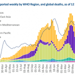 WHO: the first substantial decline in global Covid cases in more than two months